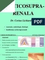Cor Tico Suprarenal A