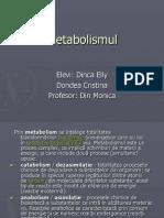 metabolismul ppt