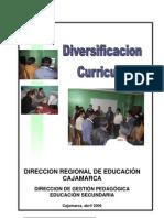 Diversificacion Curricular 2006