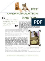 Pet Overpopulation and You