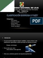 Clasificacion borrosa.pptx