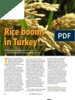 RT Vol. 12, No. 1 Rice booms in Turkey