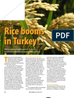 RT Vol. 12, No. 1 Rice booms in Turkey