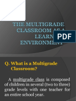 The Multigrade Classroom as a Learning Environment