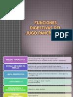 funciones digestivas
