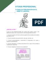 Dermatosis Profesional