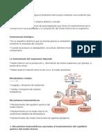 Biología - Homeostasis (Resúmen)