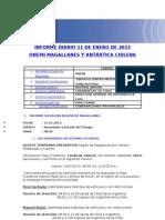 INFORME DIARIO ONEMI MAGALLANES 11.01.2013