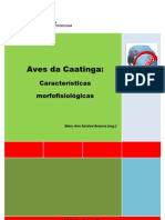 aves_da_caatinga
