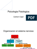 STRUCTURE AND FUNCTIONS OF THE NERVOUS SYSTEMS CELS