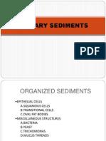 Urinary Sediments