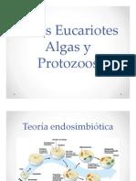 Otros Eucariotes Algas y Protozoos 2.pdf