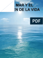 agua marinha