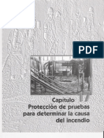 Capitulo 17. Protección de Pruebas Para Determinar La Causa