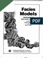 Facies Models