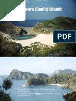 Ogasawara (Bonin) Islands