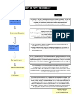 Flow Chart of Technology Protoplast Fusion