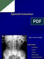LP renal 1