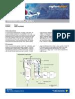 oxygen analyser in coal firing.pdf