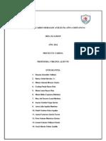 INSTITUTO RICARDO MORALES AVILES 5to AÑO A DISTANCIA