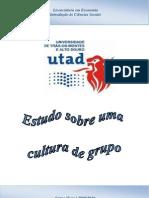 TPG3 - Estudo Sobre Uma Cultura de Grupo[1]