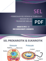 Organel Sel 1279869004 Phpapp02