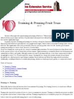 Training & Pruning Fruit Trees