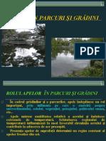 p3- Apele in Parcuri Si Gradini