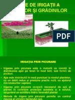 P4 Metode de Irigatii Parcuri Gradini