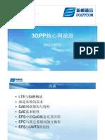 003  3GPP核心网演进(SAE)npc1