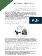 Freud-on-a-Page.pdf