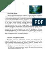Curs despre ingeri - etapa 1.pdf