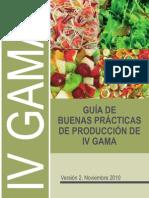 GuiaBuenasPracticas IV Gama Ver2