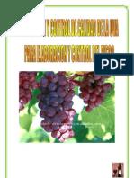 control de la uva