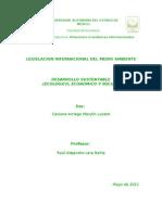 Resumen Desarrollo sustentable