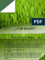 Pamela Ecosistema