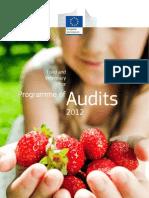 Audit FVO-2012