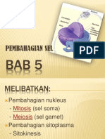 Bab 5 Biologi Tingkatan 4