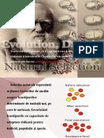 Factori Genetici Ai Evolutiei