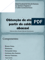 Slide de Organica - Abacaxi (1)