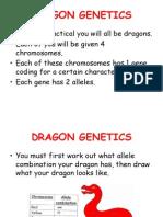 Dragon Genetics Ppt[1]