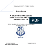 46095125 a Study on Marketing Strategies of Colgate Palmolive Ltd