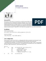 Crating an Internal DNS Server