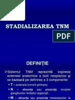 STADIALIZAREA TNM