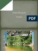 Eutrofização-causas