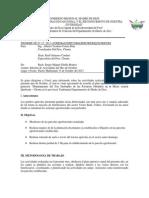 informe de sistemas agroforestales