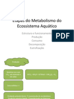 Etapas Do Metabolismo Aquatico