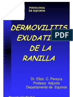 INTERTRIGO DE LA RANILLA  - DERMOVILITIS EXUDATIVA DE LA RANILLA