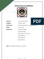 LOS RECURSOS NATURALES 1.doc