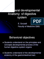 the general development anatomy of digestive system